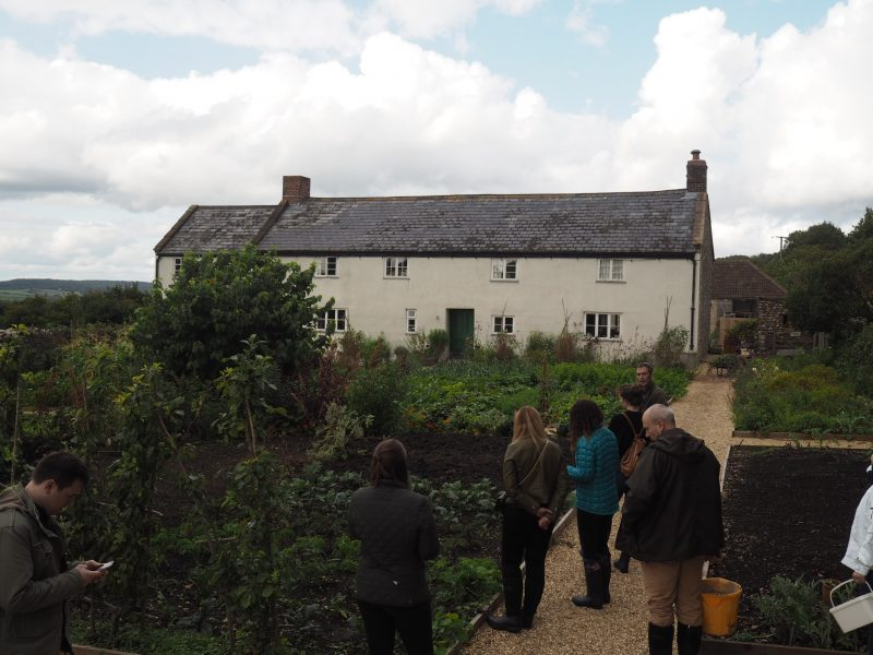 what-Lizzy-Loves-River-Cottage