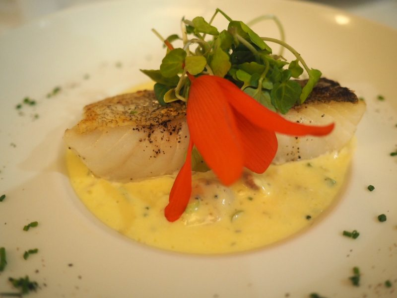 what lizzy loves bank House Hotel review cod