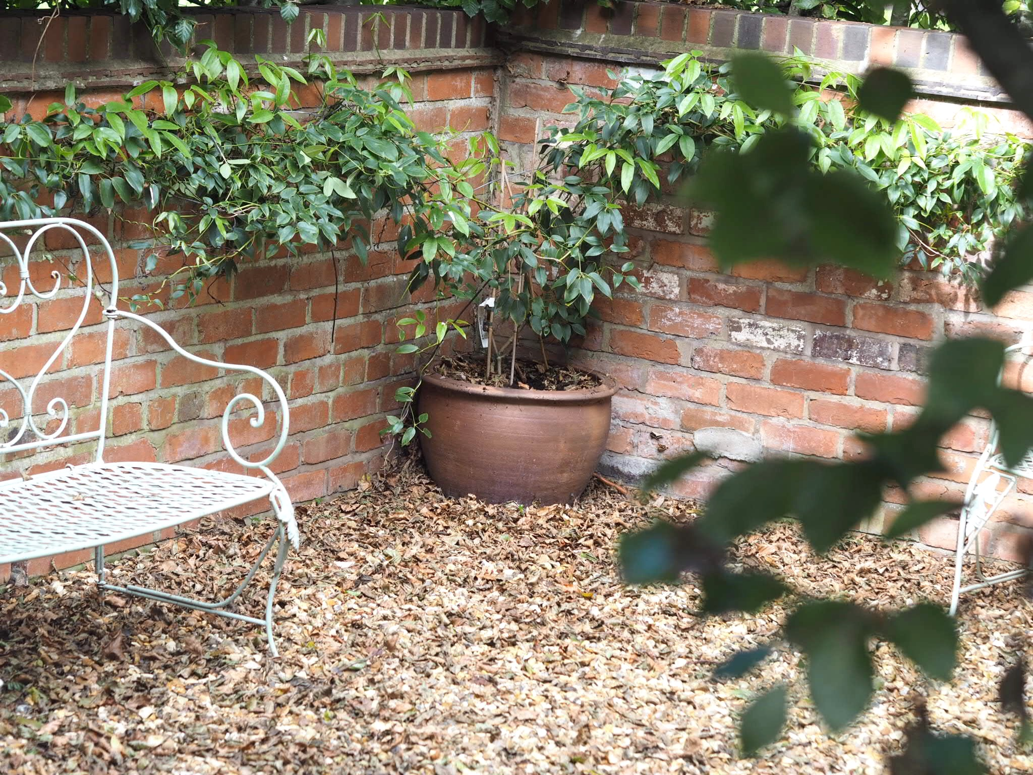 What-LizzyLoves-Bank-House-Hotel-spa-review-Worcester-outside-bench