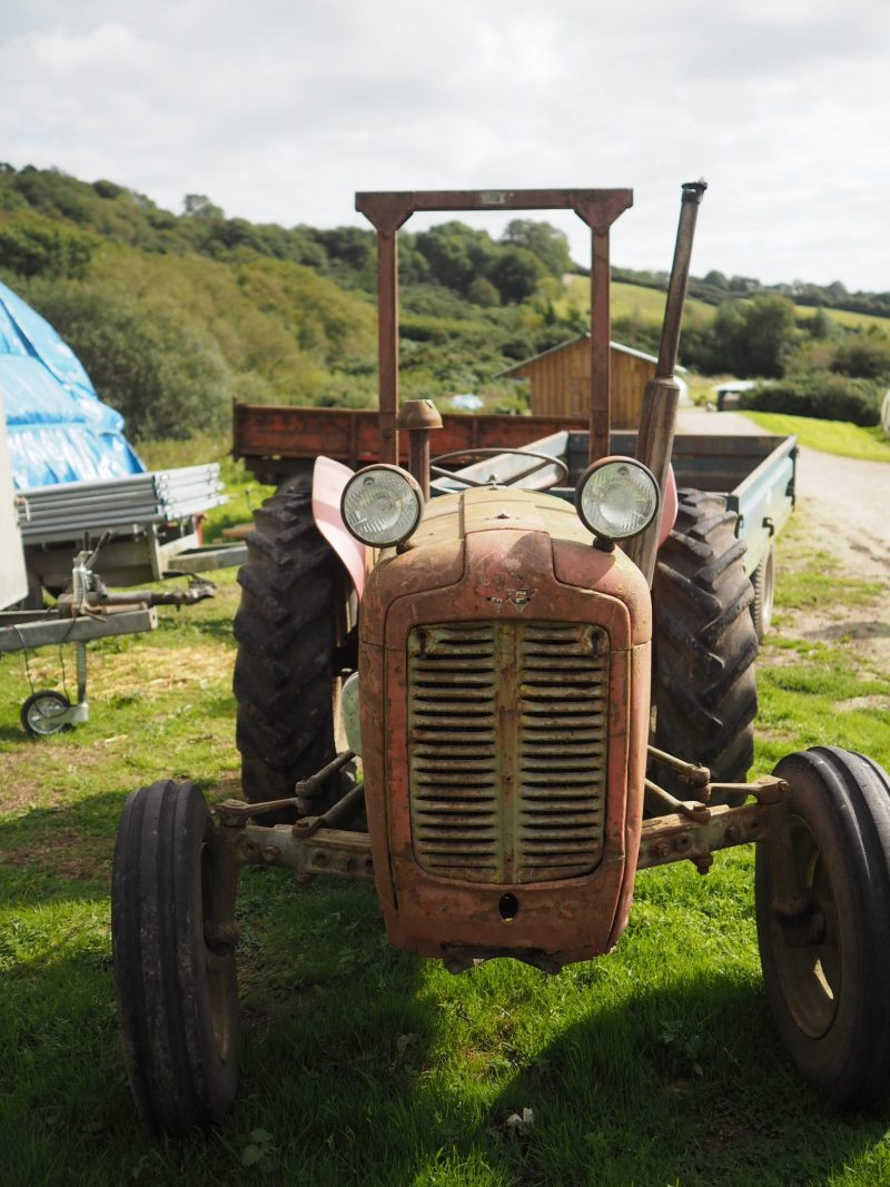 what-Lizzy-Loves-River-Cottage-old-tractor