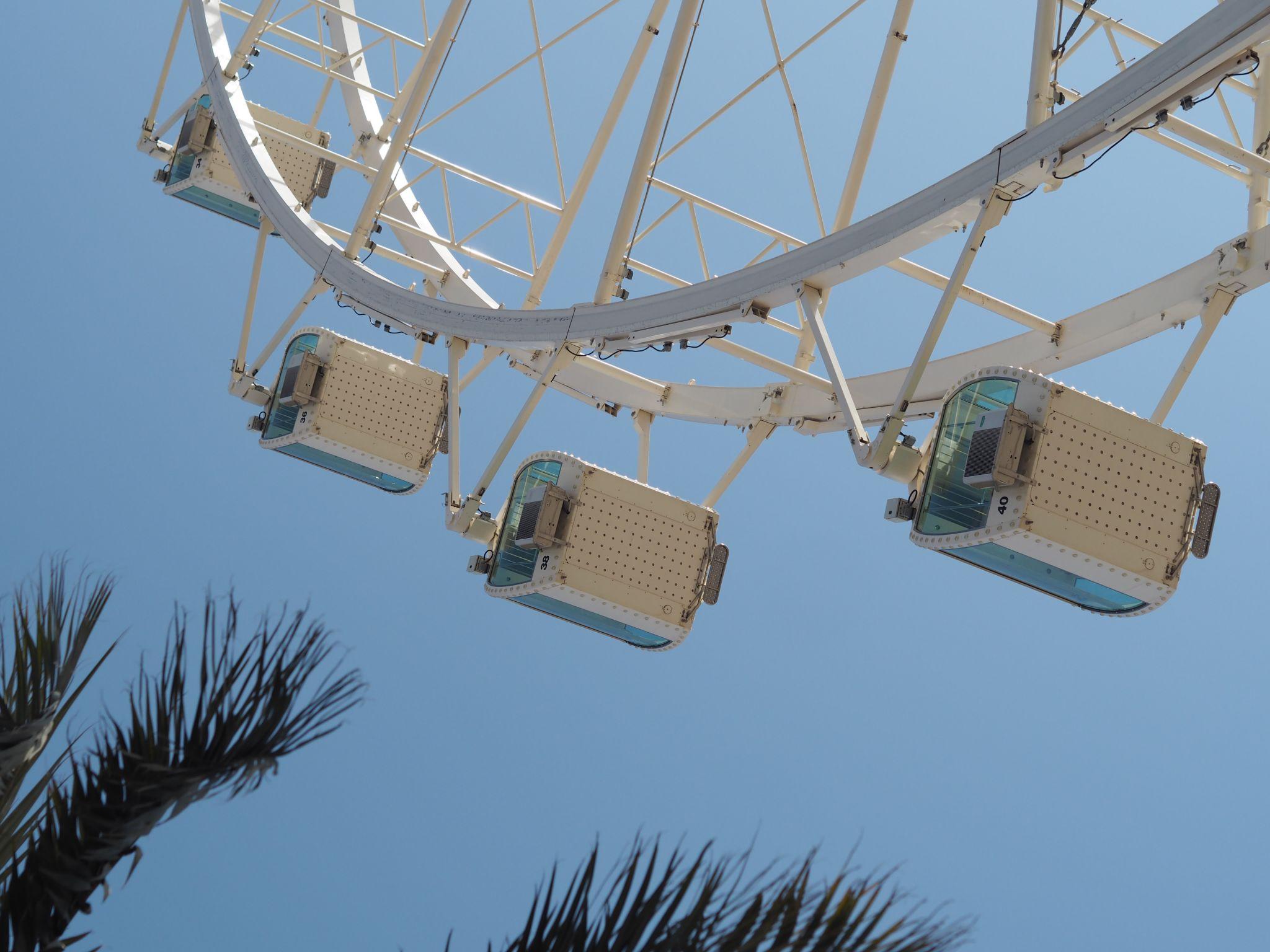 What Lizzy Loves Malaga big wheel palm trees