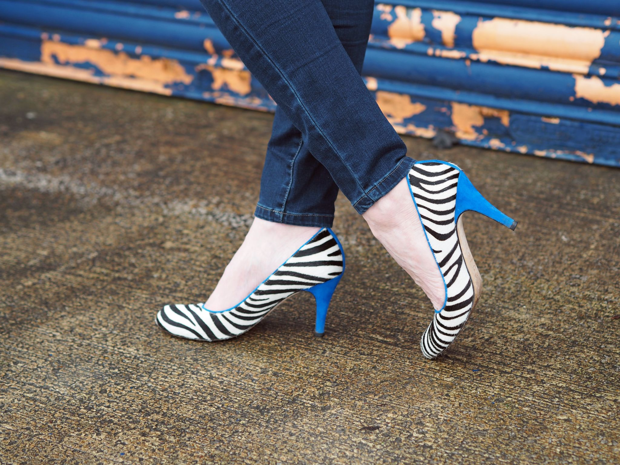 what-lizzy-loves-zebra-shoes-cobalt-blue-heels-trim