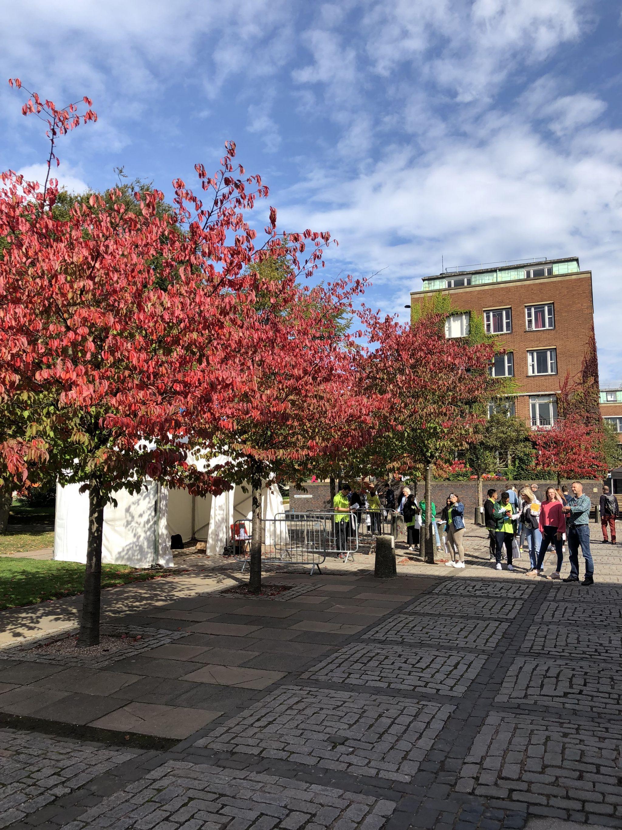 Birmingham university open day